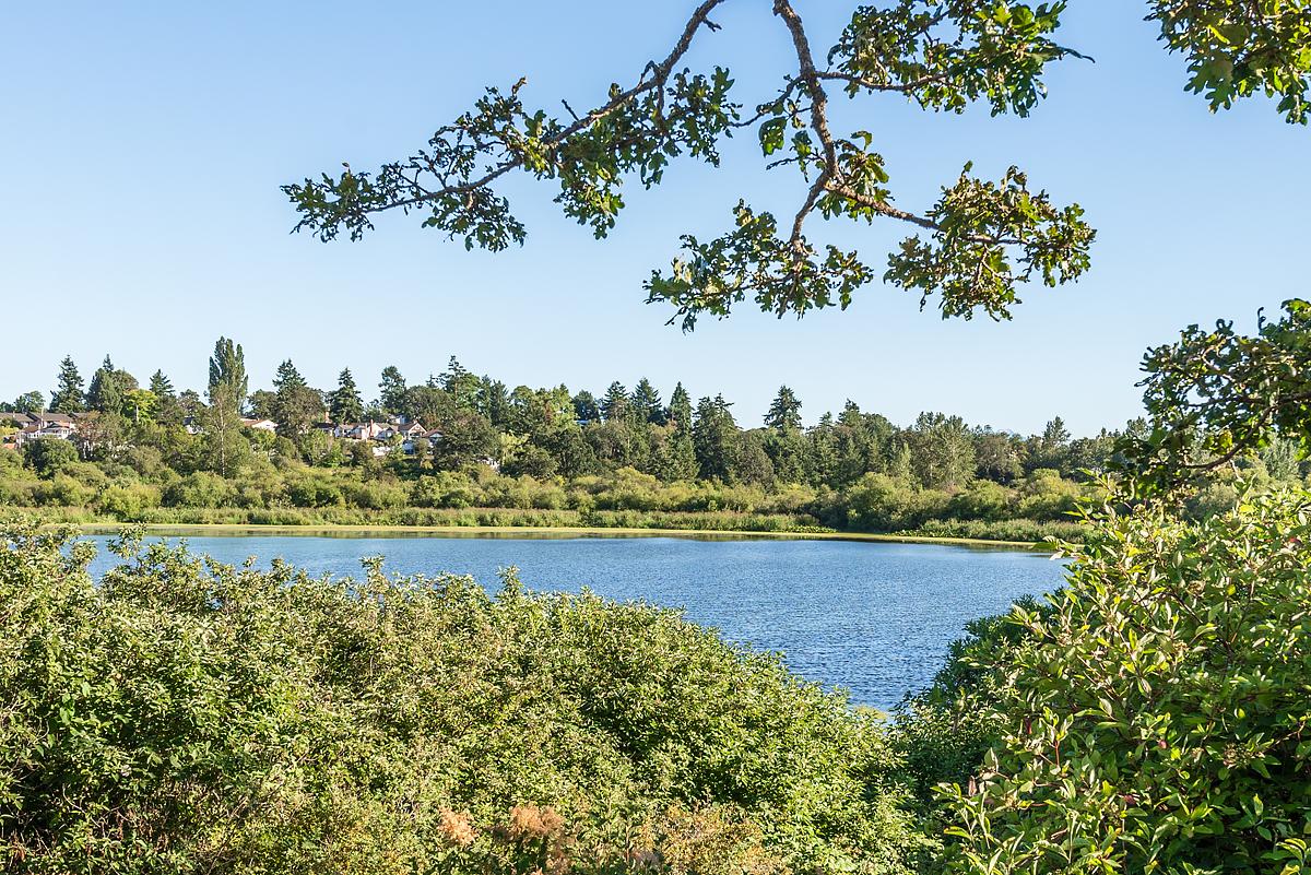 Swan Lake, Saanich East,